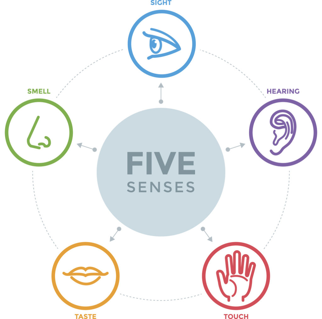 engaging the five senses in event planning - washington, DC event planner JDC Events